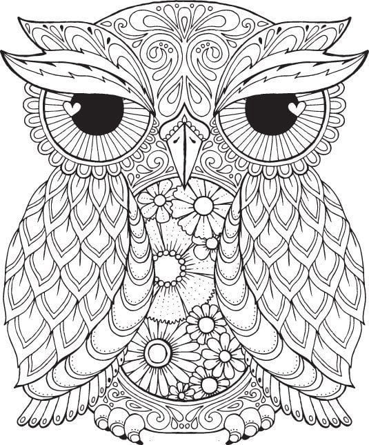 Free Owl Col Best Free Owl Coloring Pages