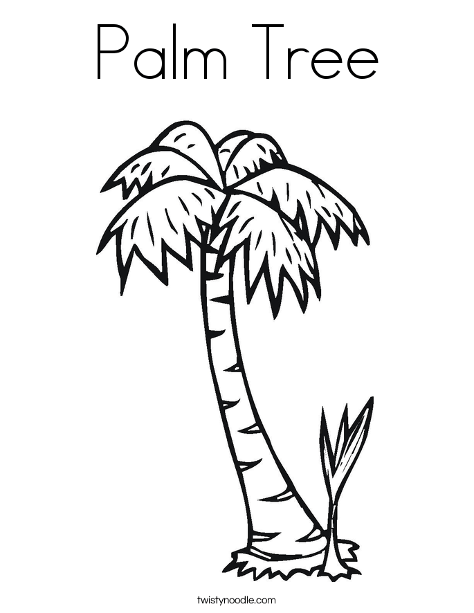 Free Printable Coloring Pages Of Palm Trees Enormous Palm Tree