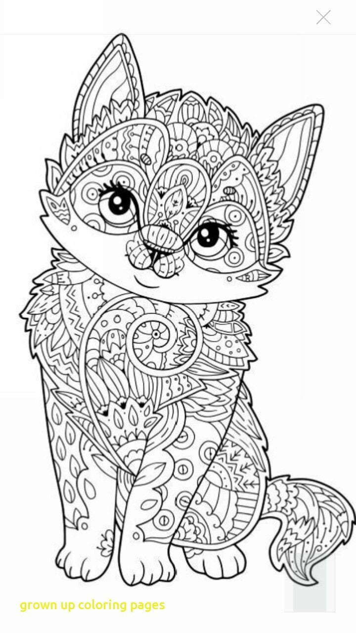 Grown Up Coloring Pages With Best 25 Colouring Pages Ideas On
