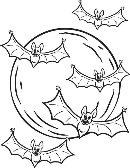 Wonderful Bats Coloring Pages 16827  11489
