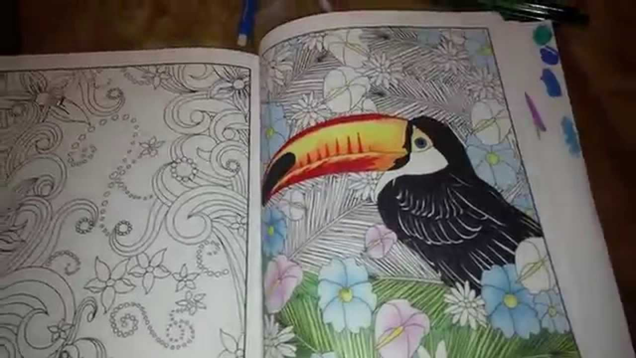 Adult Coloring Book, Pencils, Markers Review