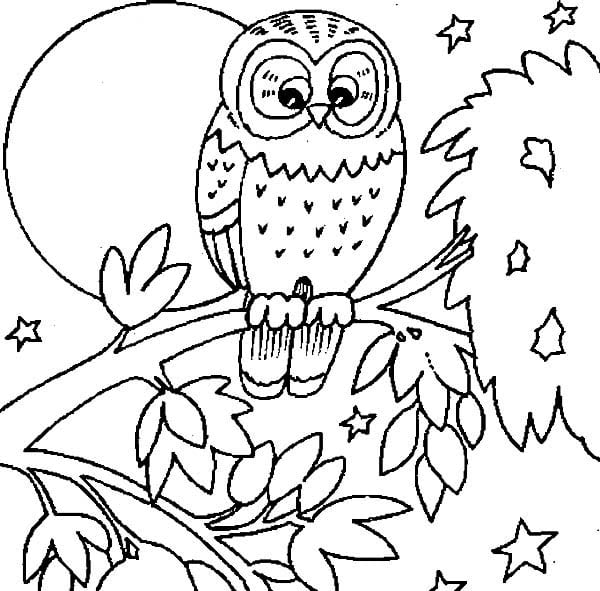 Owl Coloring Pages Spectacular Free Owl Coloring Pages