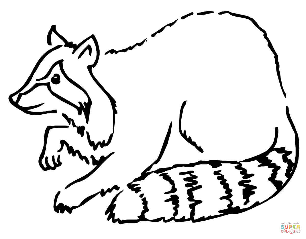 Raccoons Coloring Pages