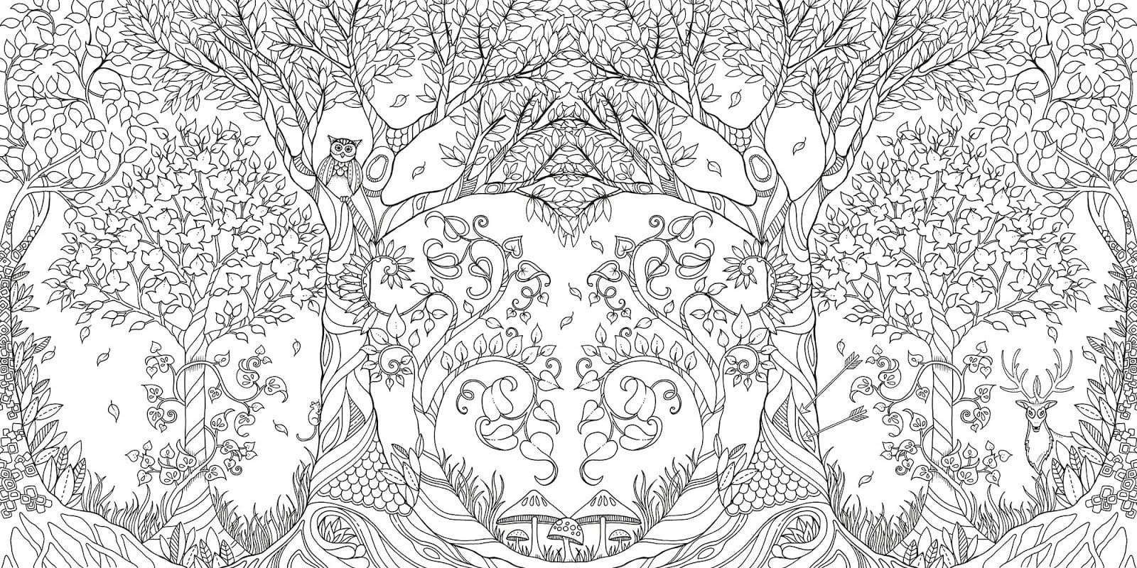 Grown Up Coloring Books Are Here!