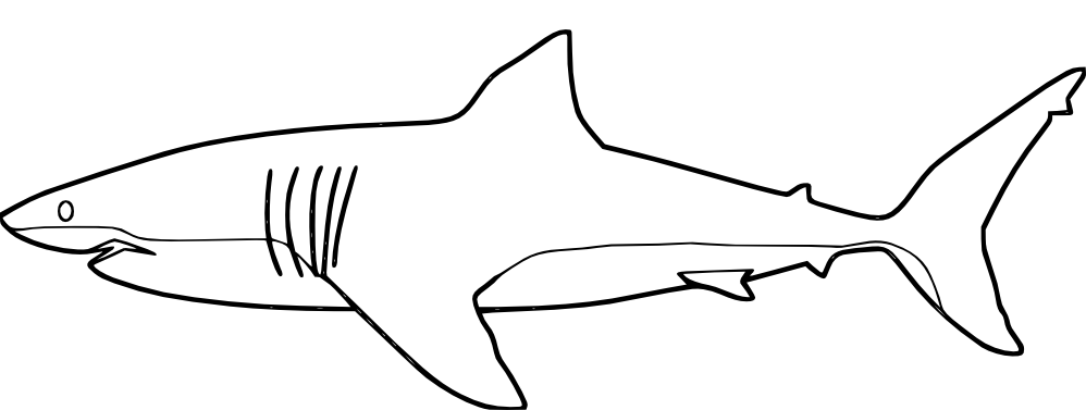 Sharks Coloring Pages 9  11836
