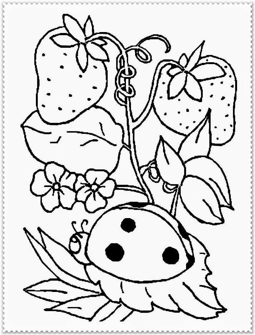 Spring Coloring Page With Pages Sunny Garden Free And Full