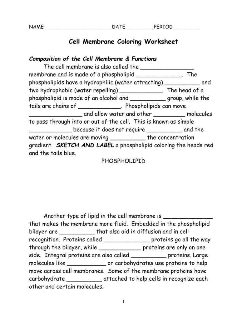 009217009 1 For Cell Membrane Coloring Worksheet