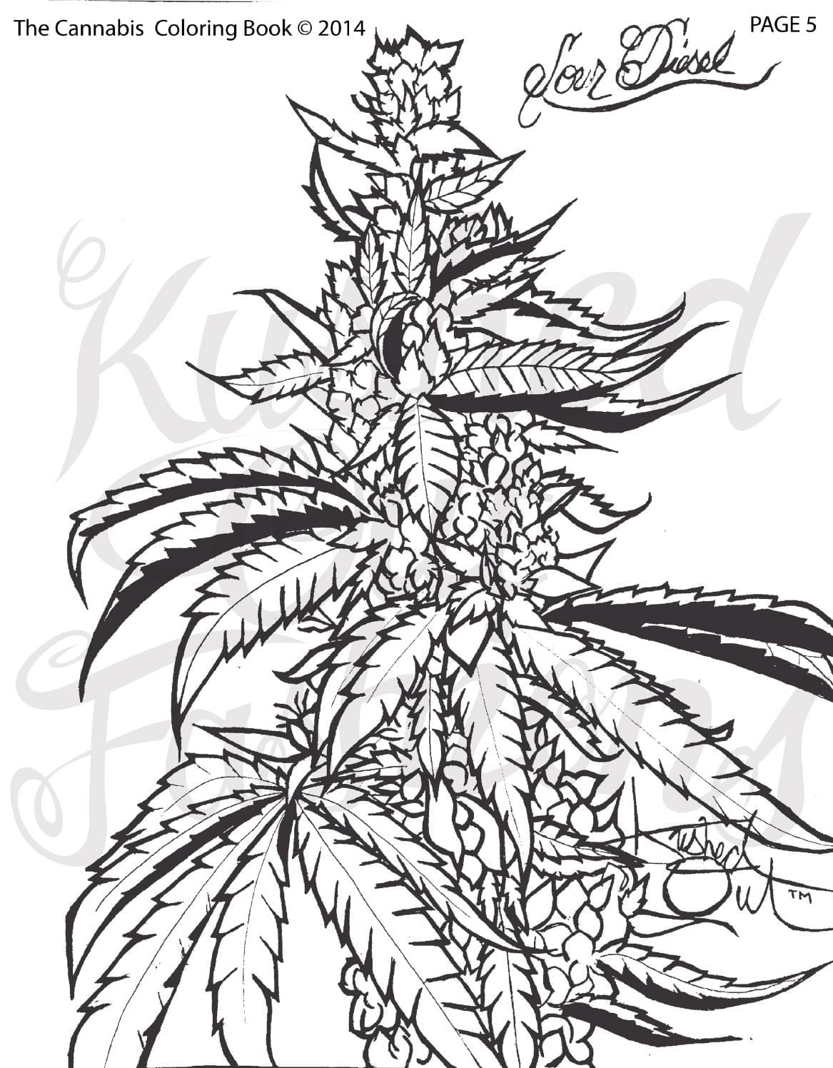 The Cannabis Coloring Book Vol  1   Issue 1