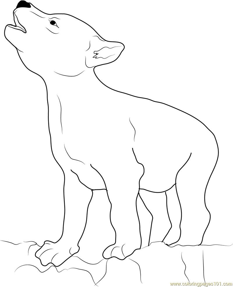 Wolf Coyote Coloring Page