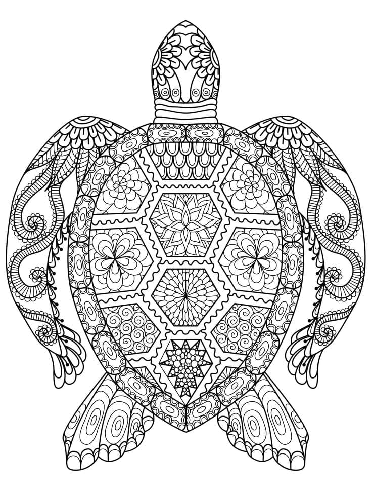 Adult Coloring Page Best 25 Pages Ideas On Neo Coloring Color For