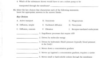 Anatomy And Physiology Coloring Workbook Answers Chapter 3