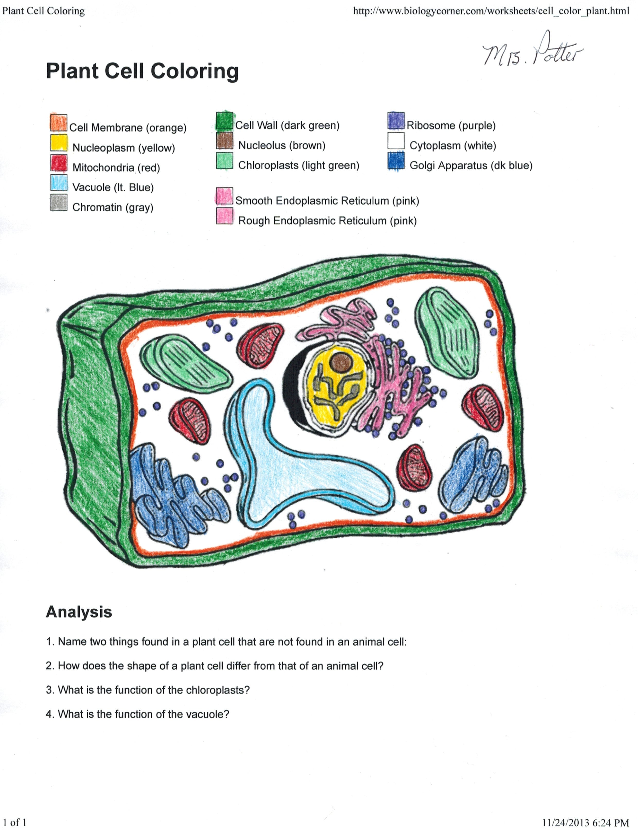 Animal Cell Coloring Page Answers Animal Cell Coloring Worksheet