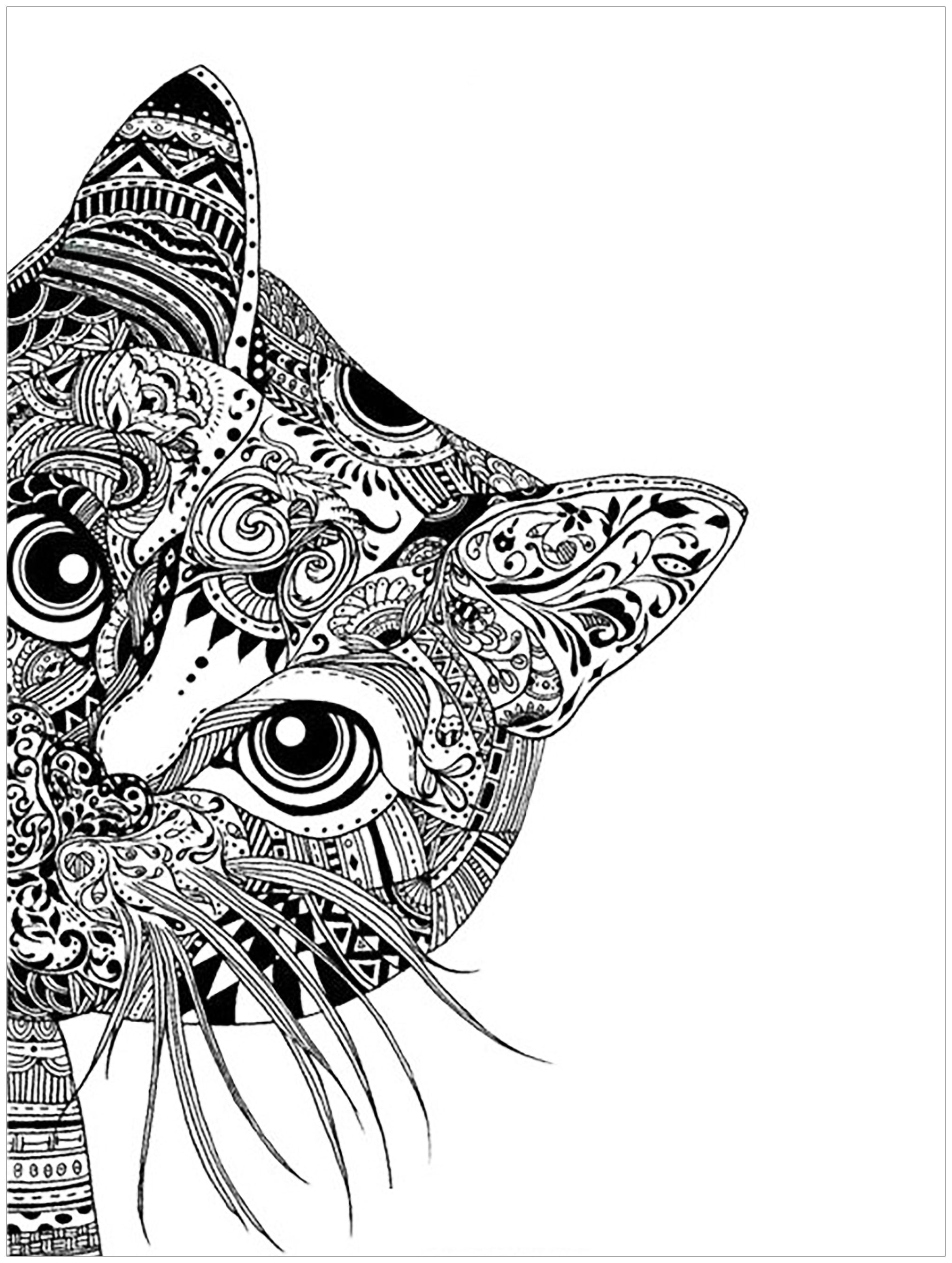 Animal Coloring Pages For Adults 42 With Animal Coloring Pages For