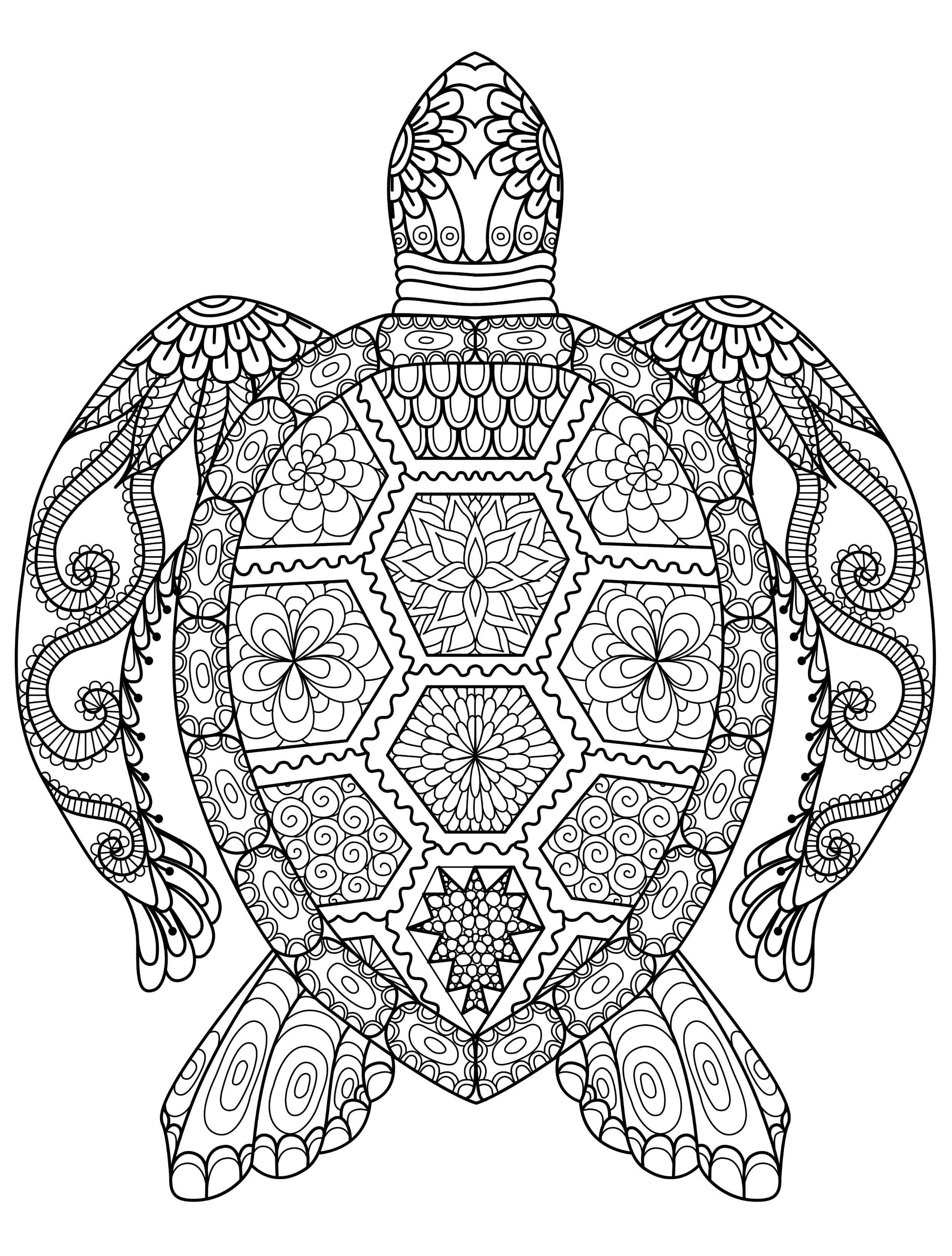 Animal Coloring Pages For Adults Best Kids With