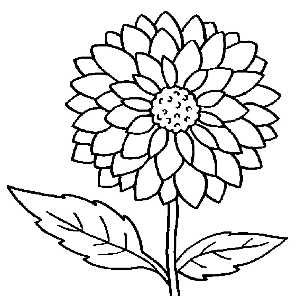 Awesome Flower Coloring Pages 40 For Your Coloring Books With