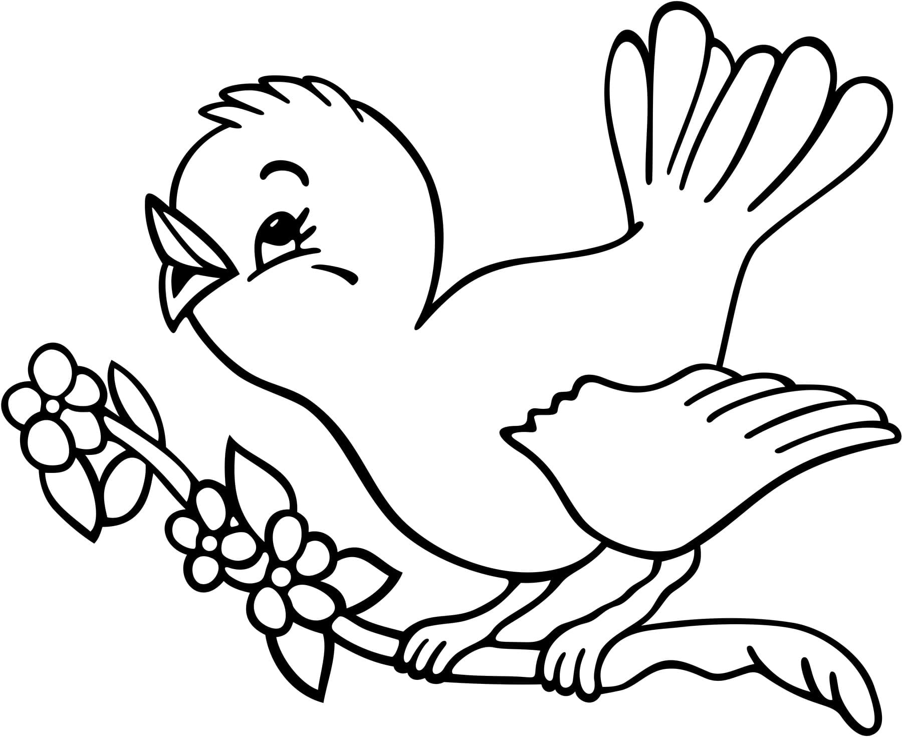 Bird Coloring Pages 6