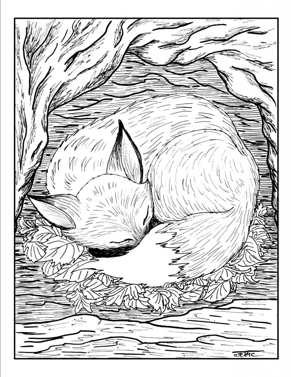 Calming Coloring Pages - NEO Coloring