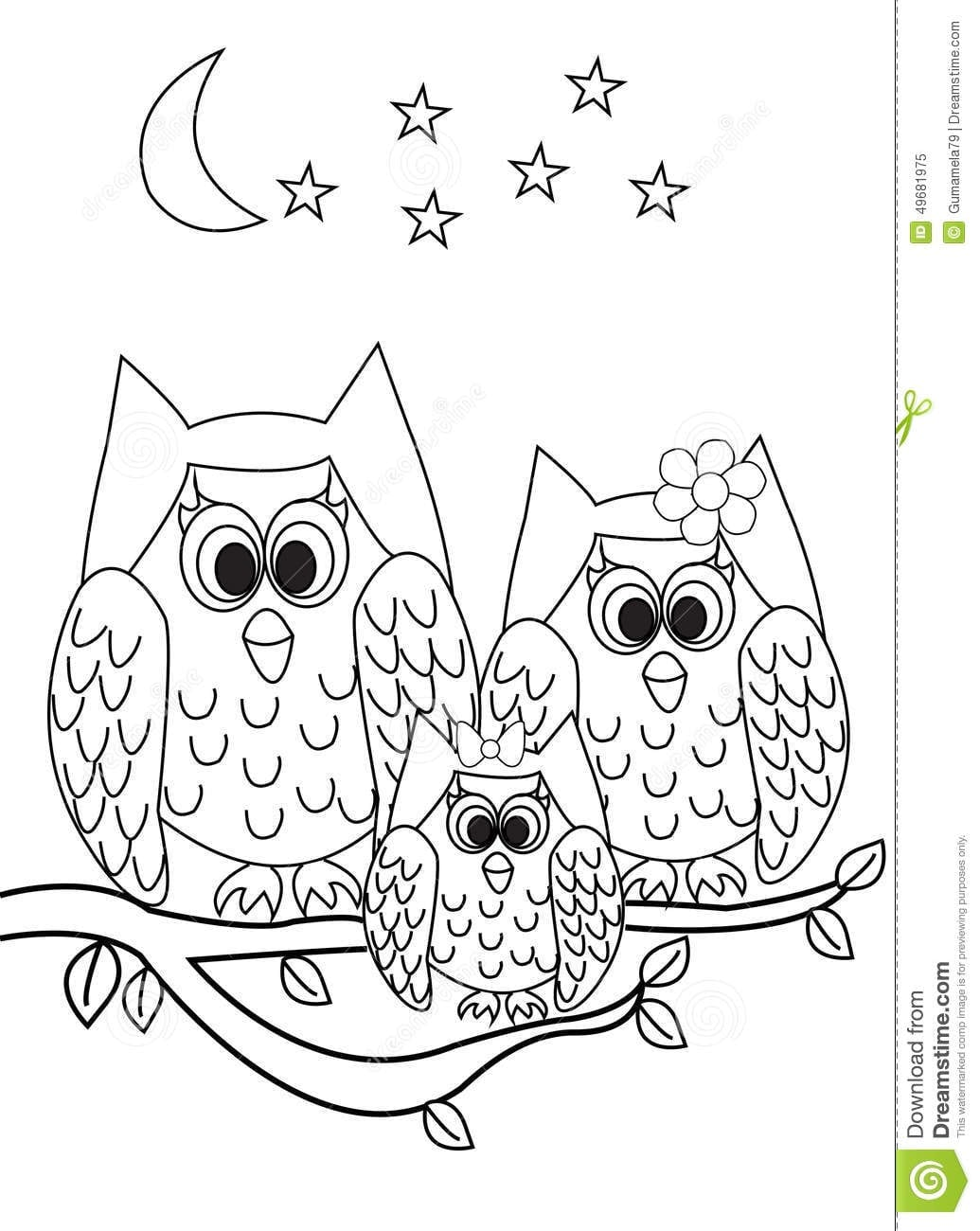 Coloring Books Owl Book Amazon Pics Pages Pictures Page Stock