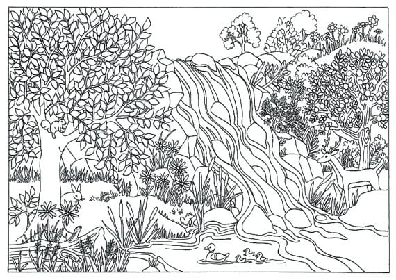 Coloring Pages For Adults Nature Coloring Pages For Adults Nature
