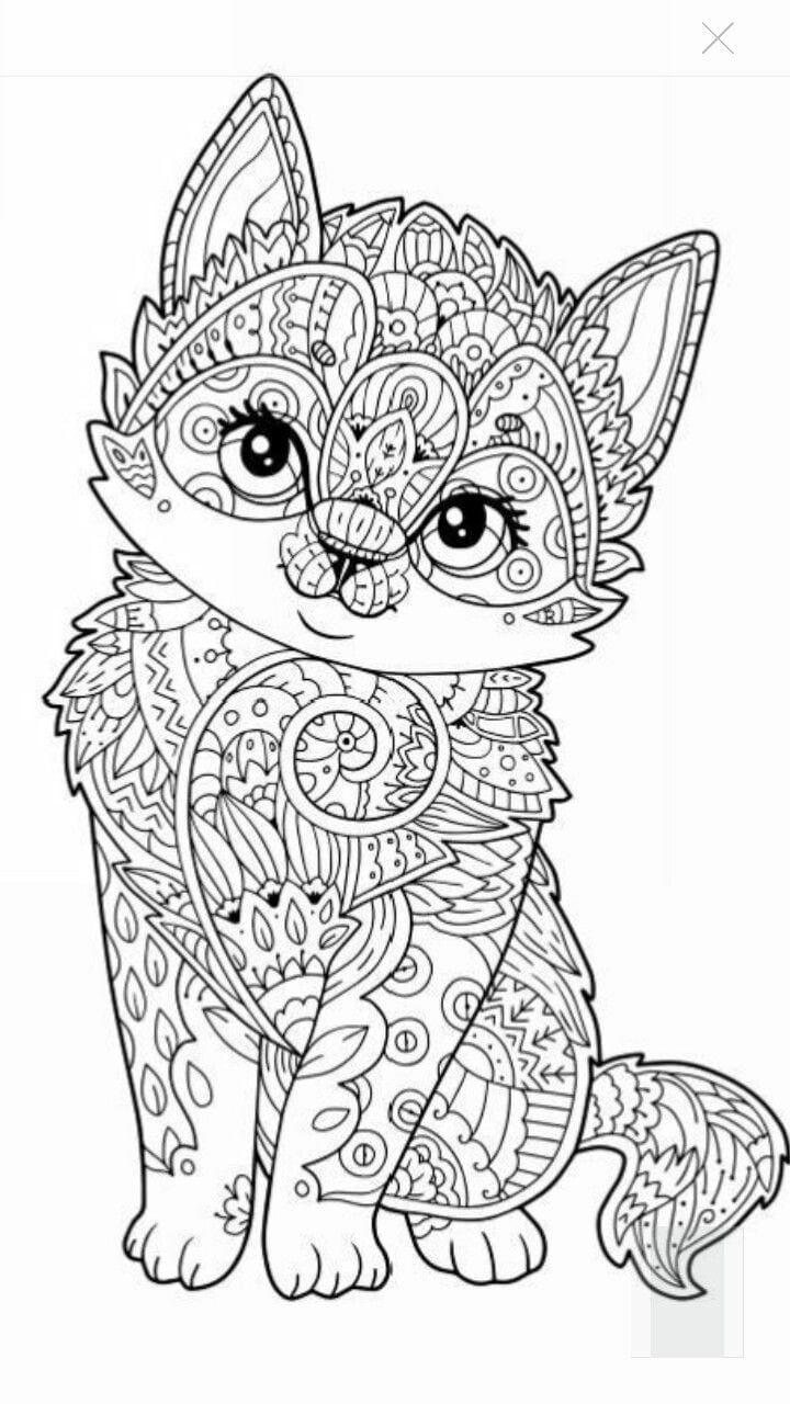 Colouring In 630 Best Adult Colouringcatsdogs Zentangles Images On