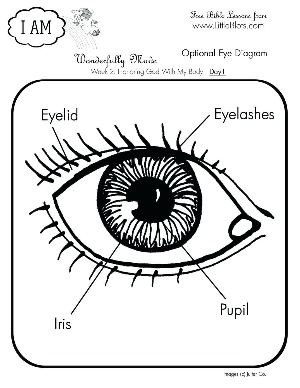 Confidential Human Eye Coloring Page Great Bes  19525