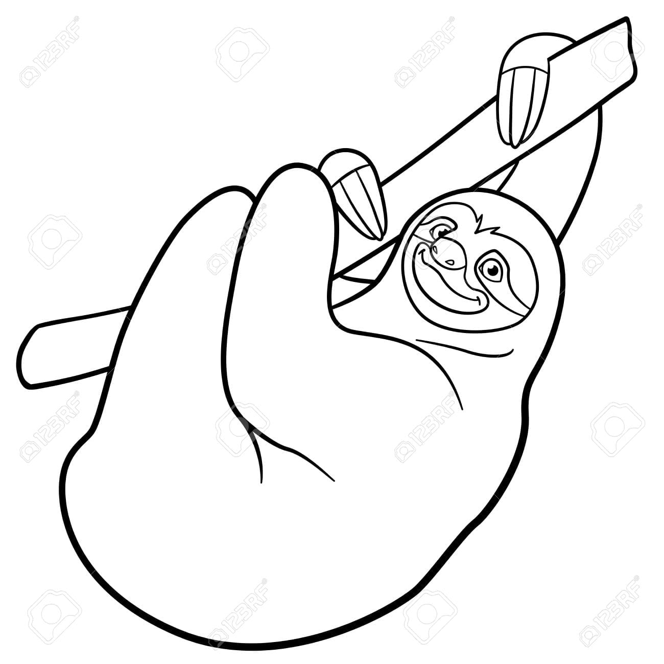 Cool Sloth Coloring Page 82 1230 Sloth Coloring Page Online
