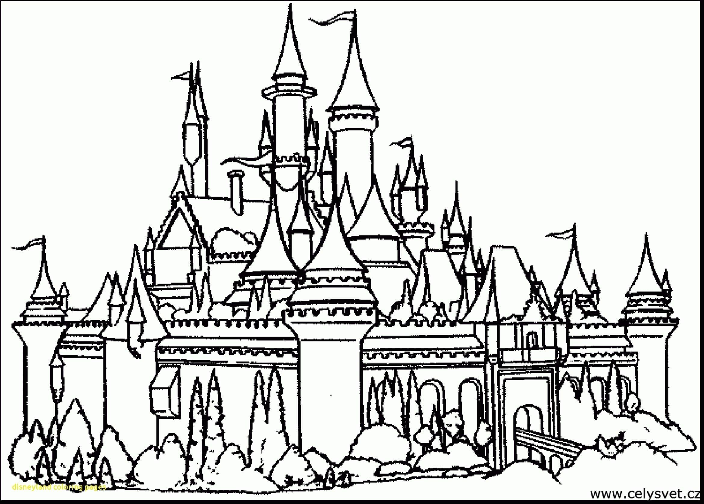 Delivered Disneyland Coloring Pages Free Printable Castle For Kids