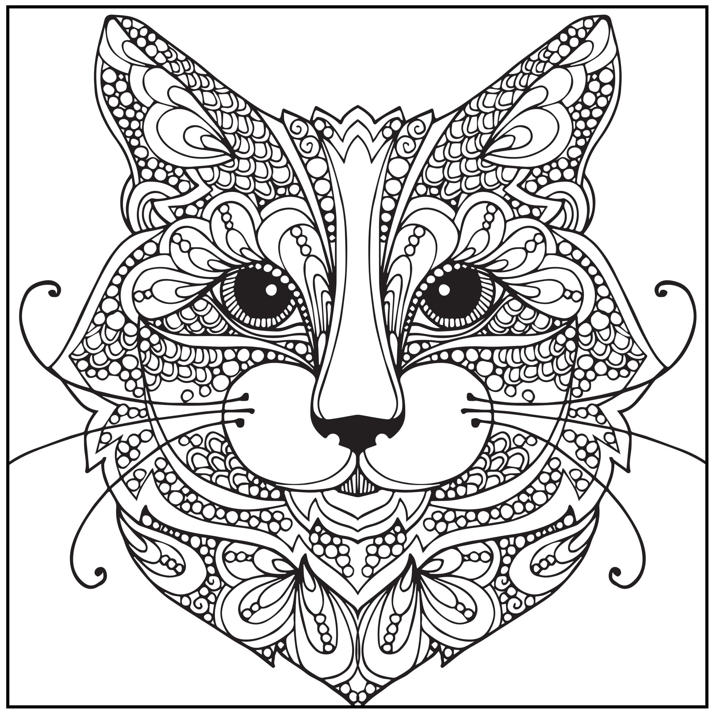 Directly Fromite Amazon Com Adult Coloring Book Wild About Books