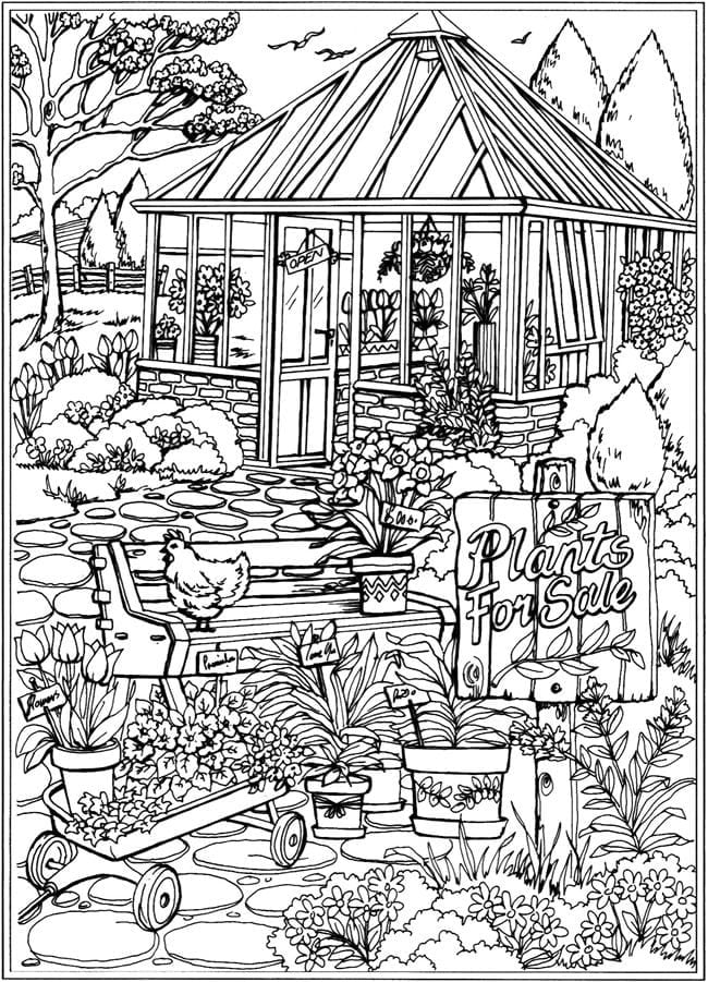 Dover Publications Coloring Pages  16379