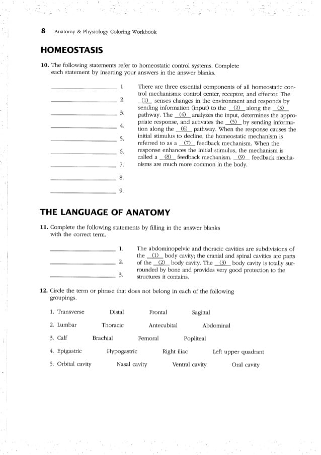 Anatomy And Physiology Coloring Workbook Answers Chap Student Neo