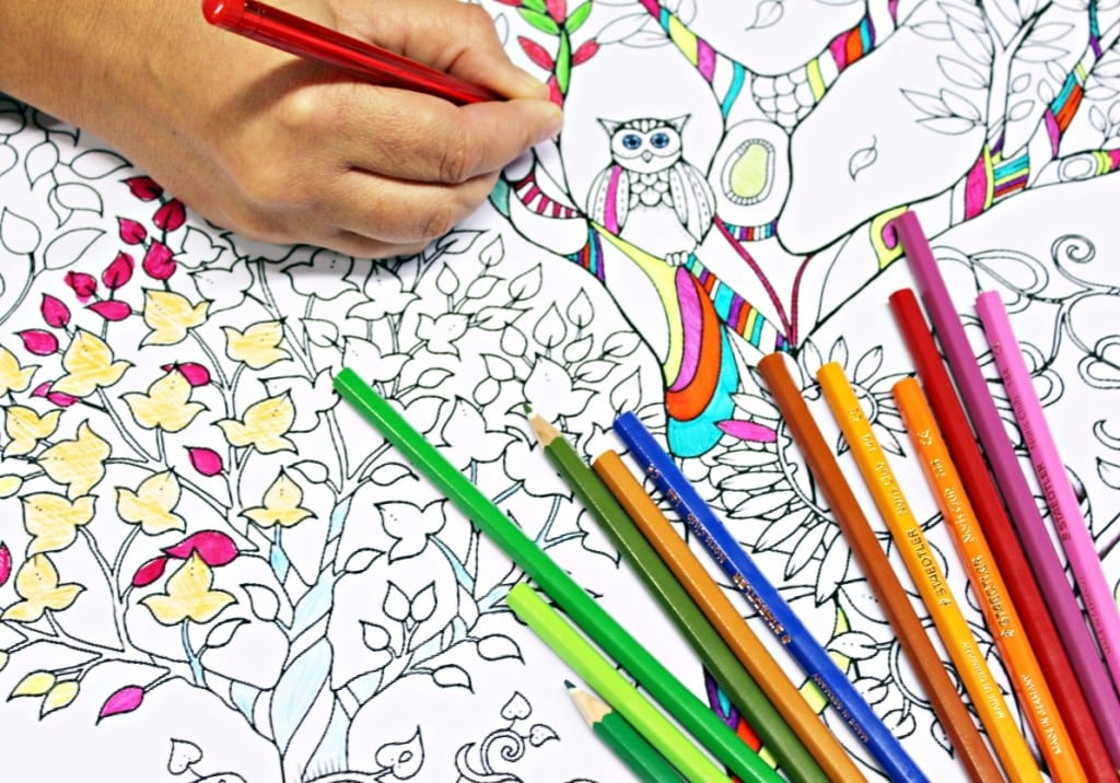 Exquisite Design The Coloring Book Adult Coloring Sessions At