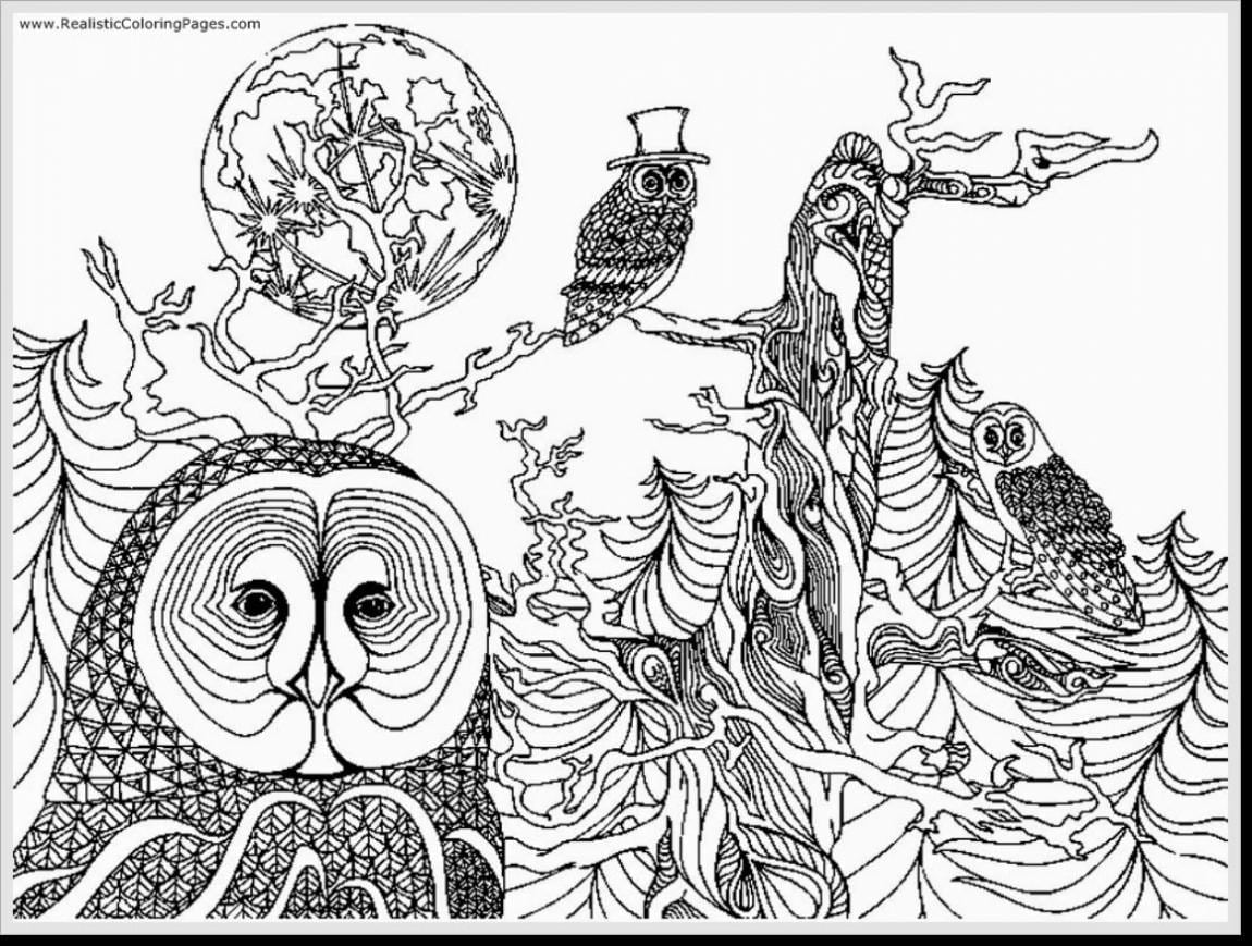 Awesome Fantastic Printable Owl Coloring Pages Adult With Free