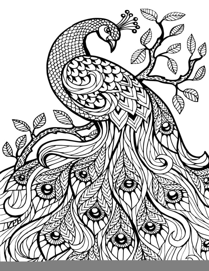 Free Printable Coloring Pages For Adults Geometric Erf Throughout