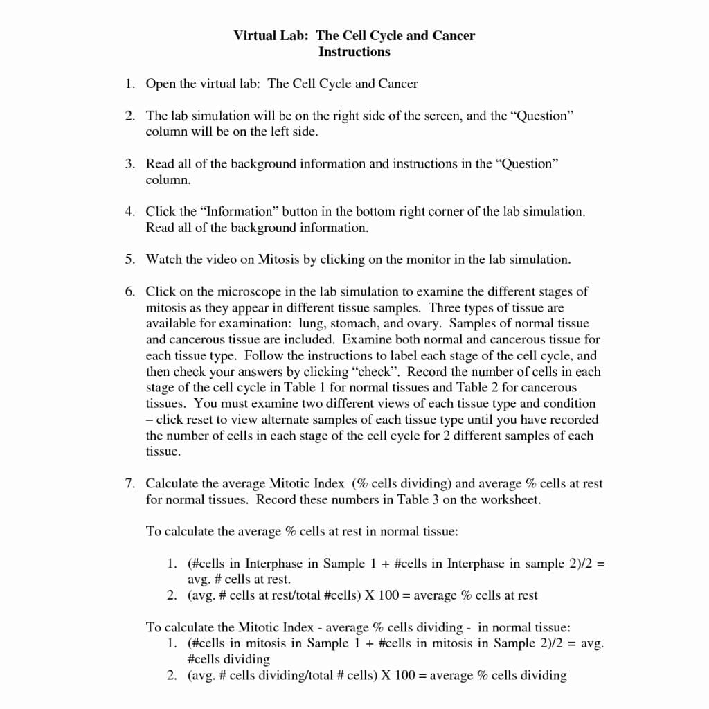 Worksheets Cell Cycle Worksheet Answers the cell cycle coloring worksheet answers functional and mitosis answer key
