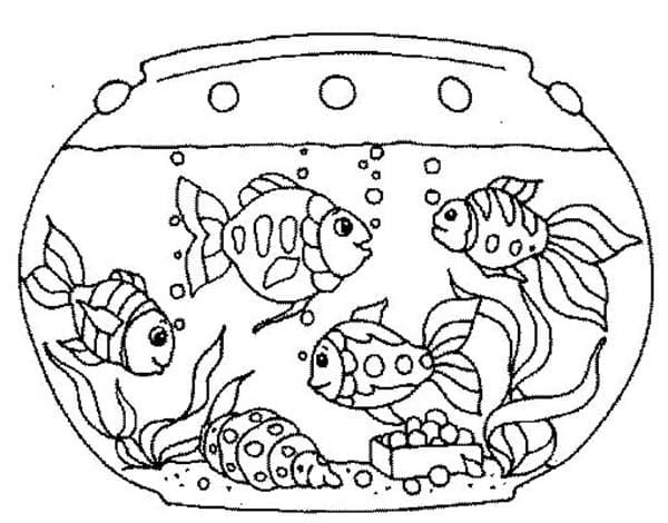 Printable Goldfish Coloring Pages Me