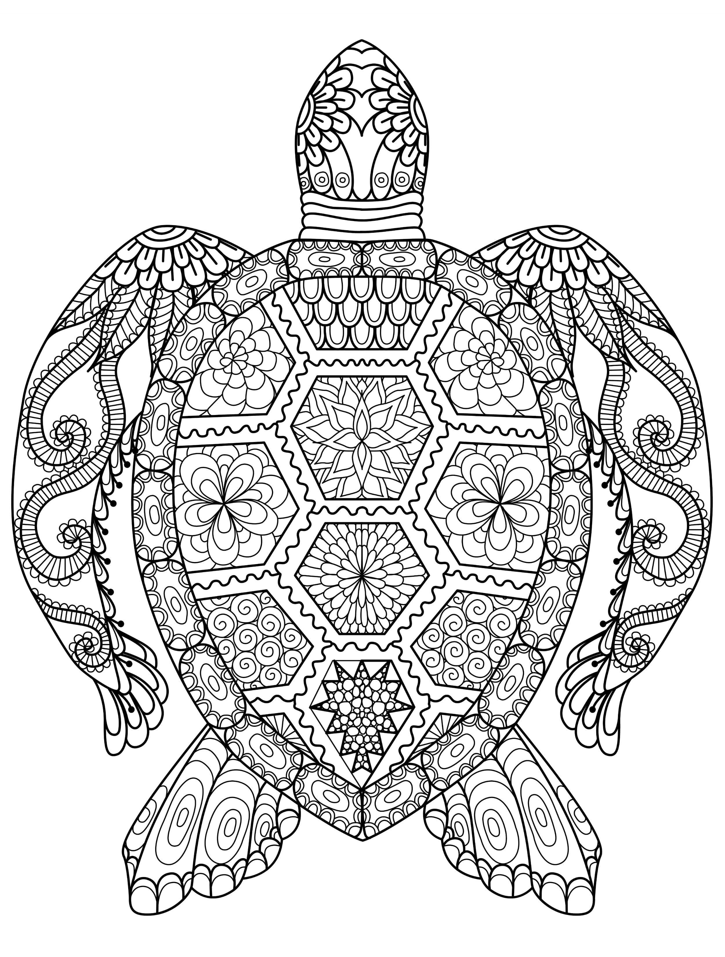 Last Chance Find Printable Adult Coloring Pages 20 Gorgeous Free