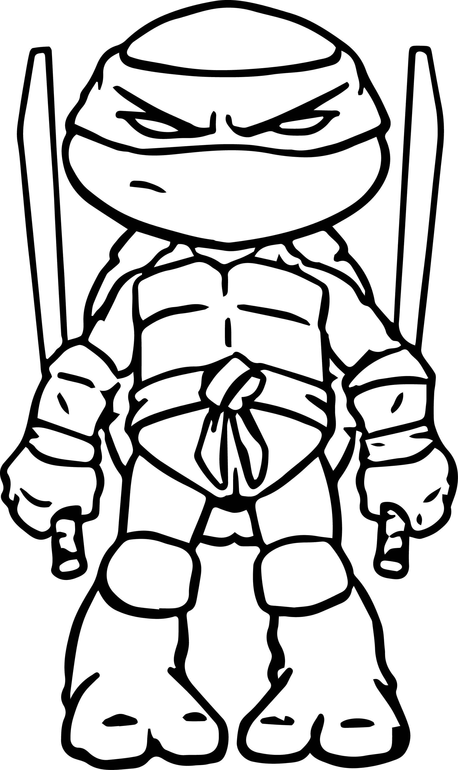 Fancy Ninja Turtles Coloring Page 24 For Free Coloring Kids With