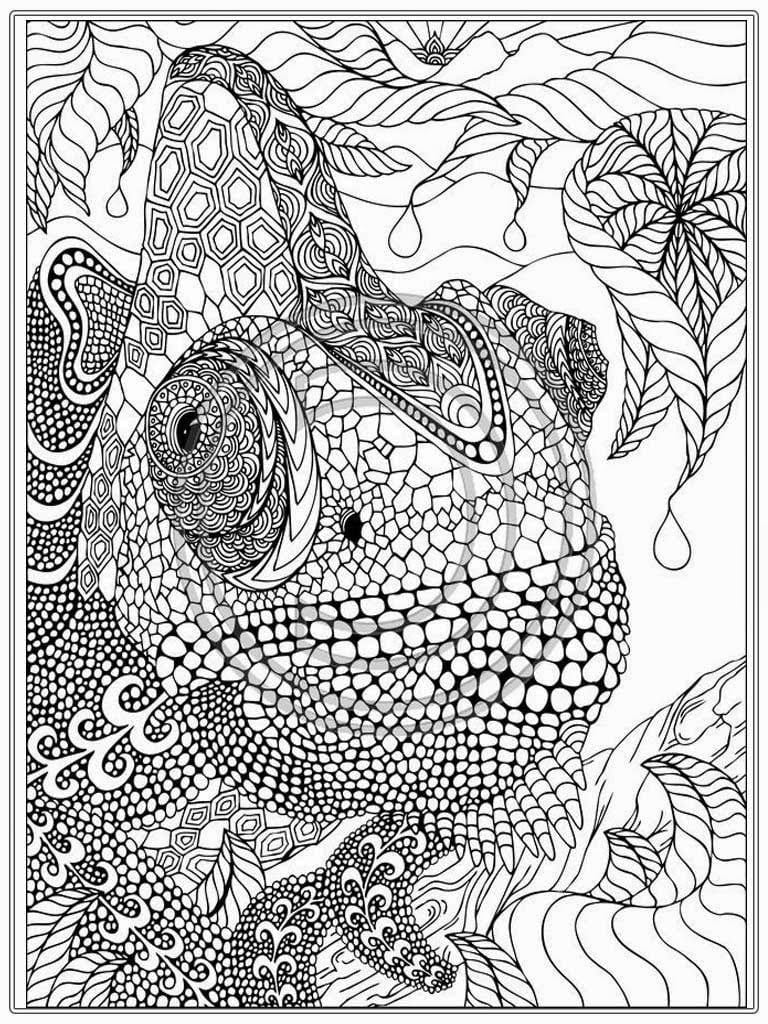 Luxury Printable Coloring Pages Adults 36 With Additional Online