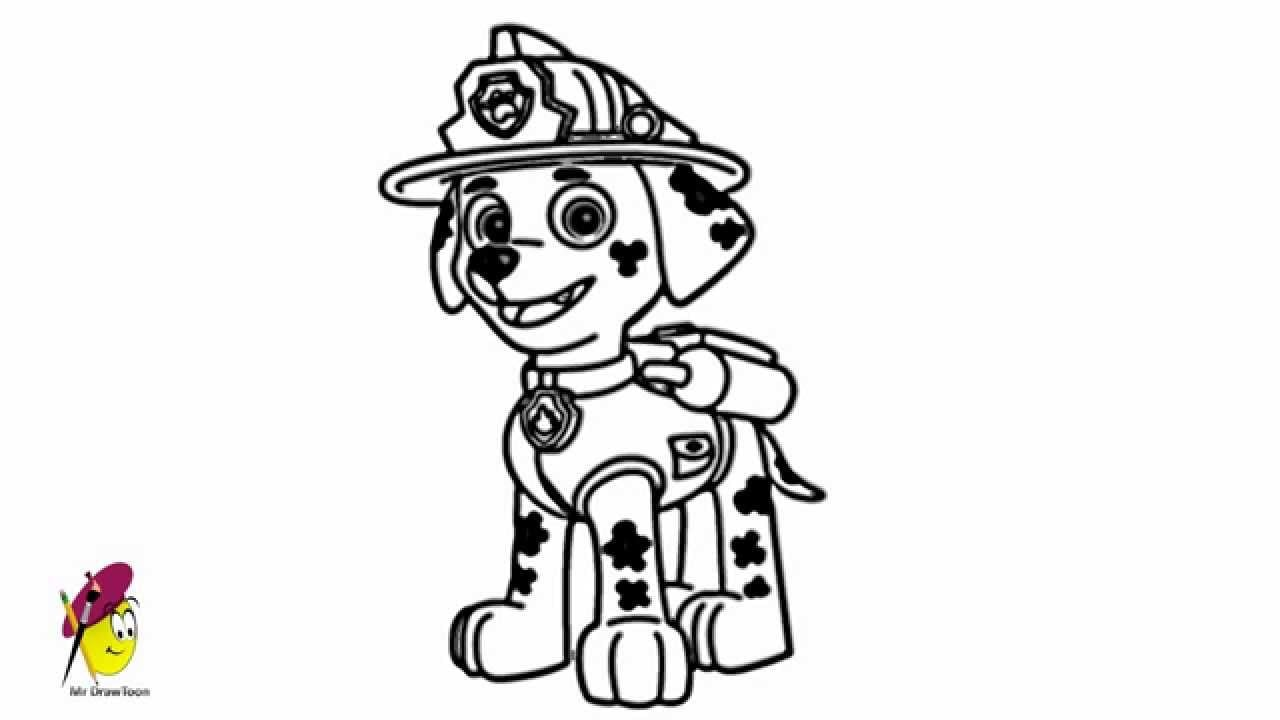 Marshall Paw Patrol How To Draw From Youtube Also Coloring Page