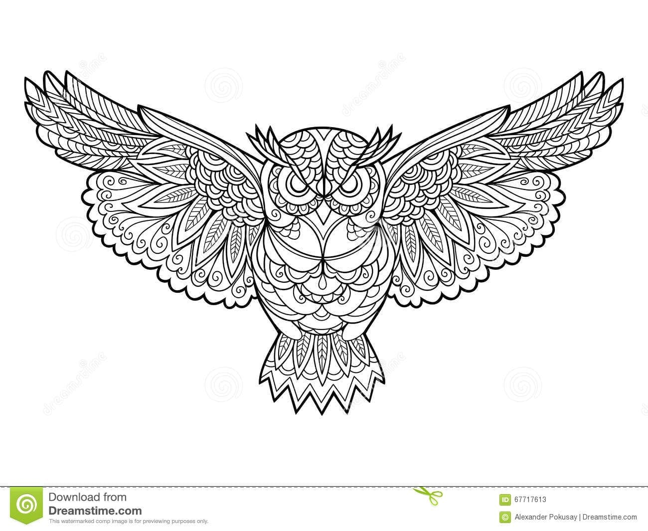 Owl Coloring Book For Adults Vector Stock Vector