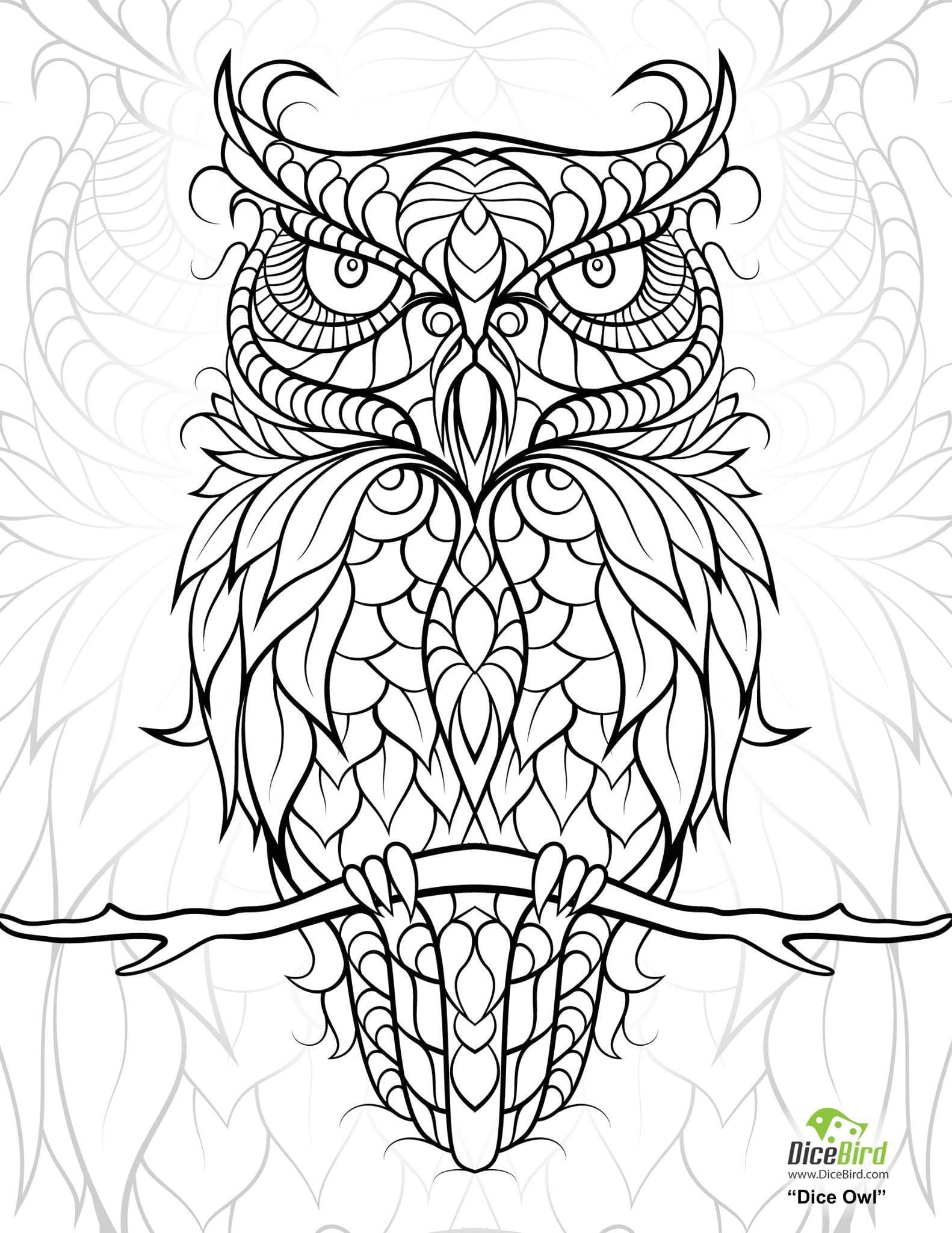 Owl Coloring Pages For Adults 92 With Owl Coloring Pages For