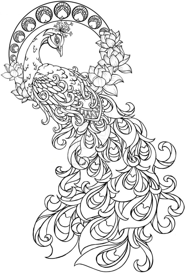 Paisley Peacock Coloring Pages For Adults Printable Henna Inside