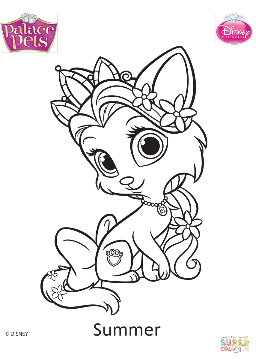 Palace Pets Summer Coloring Page