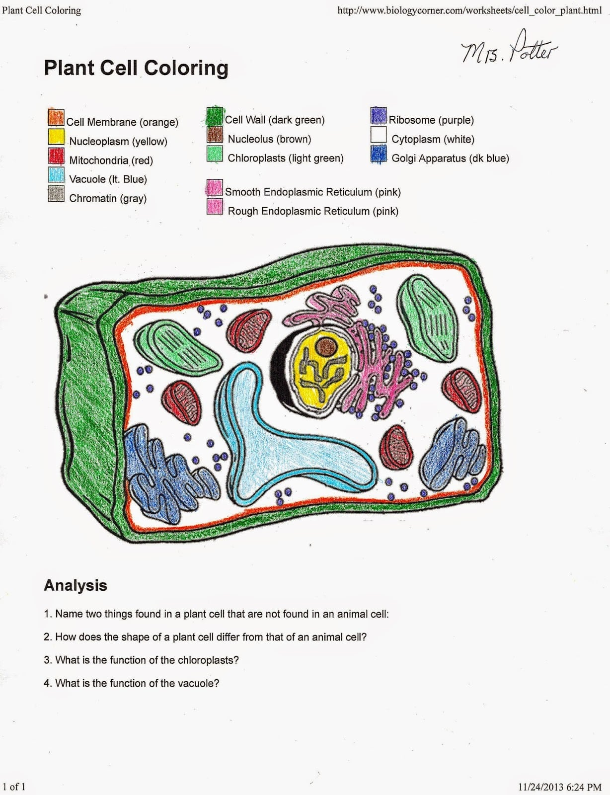 Plant Cell Coloring Page 003 To Key