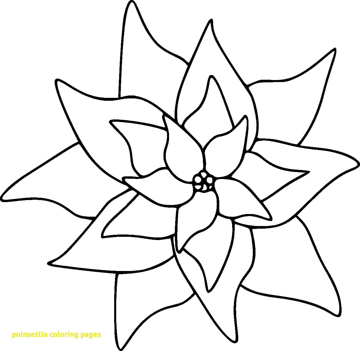 Best Printable Coloring Pages Doodle Pict Of Christmas Flower