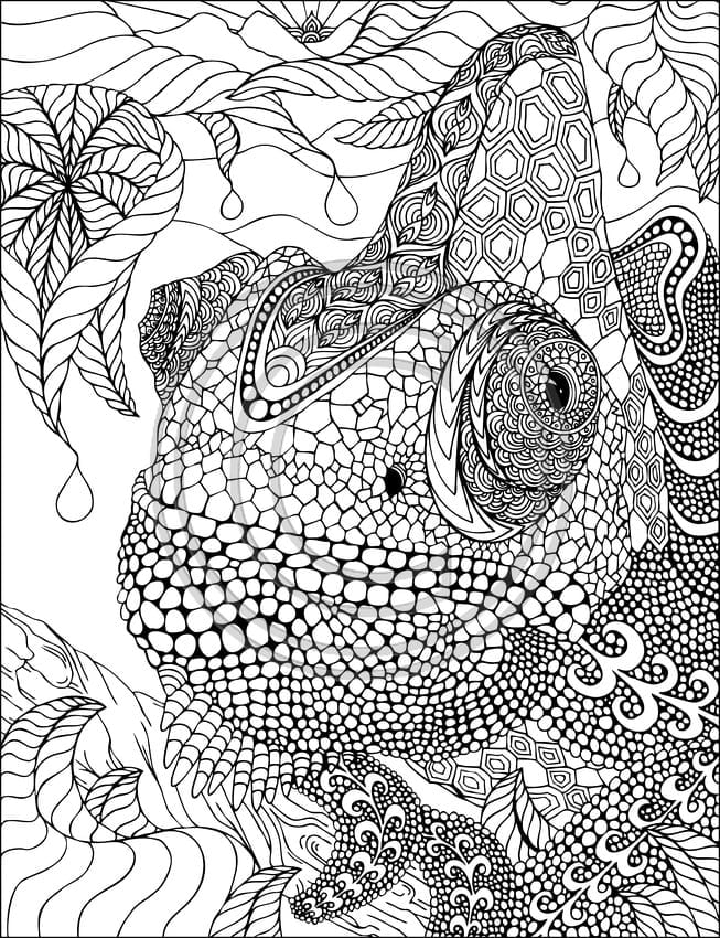 Fancy Design Ideas Zentangle Coloring Pages For Adults Free Dikma