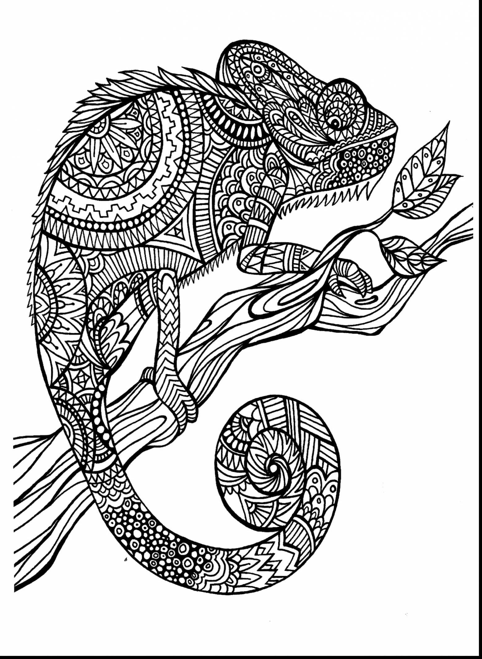 Incredible Design Ideas Free Printable Coloring Pages For Adults