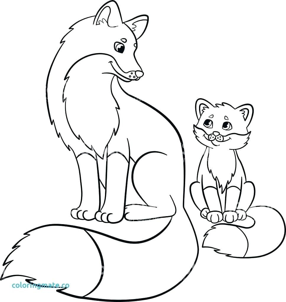 Reward Baby Fox Coloring Pages 14 For Of Babies