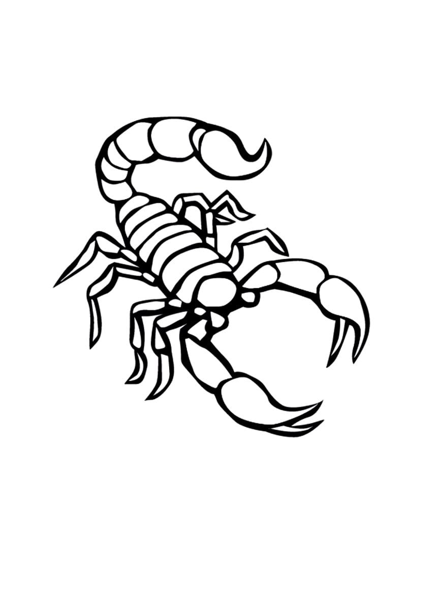 Free Printable Scorpion Coloring Pages For Kids