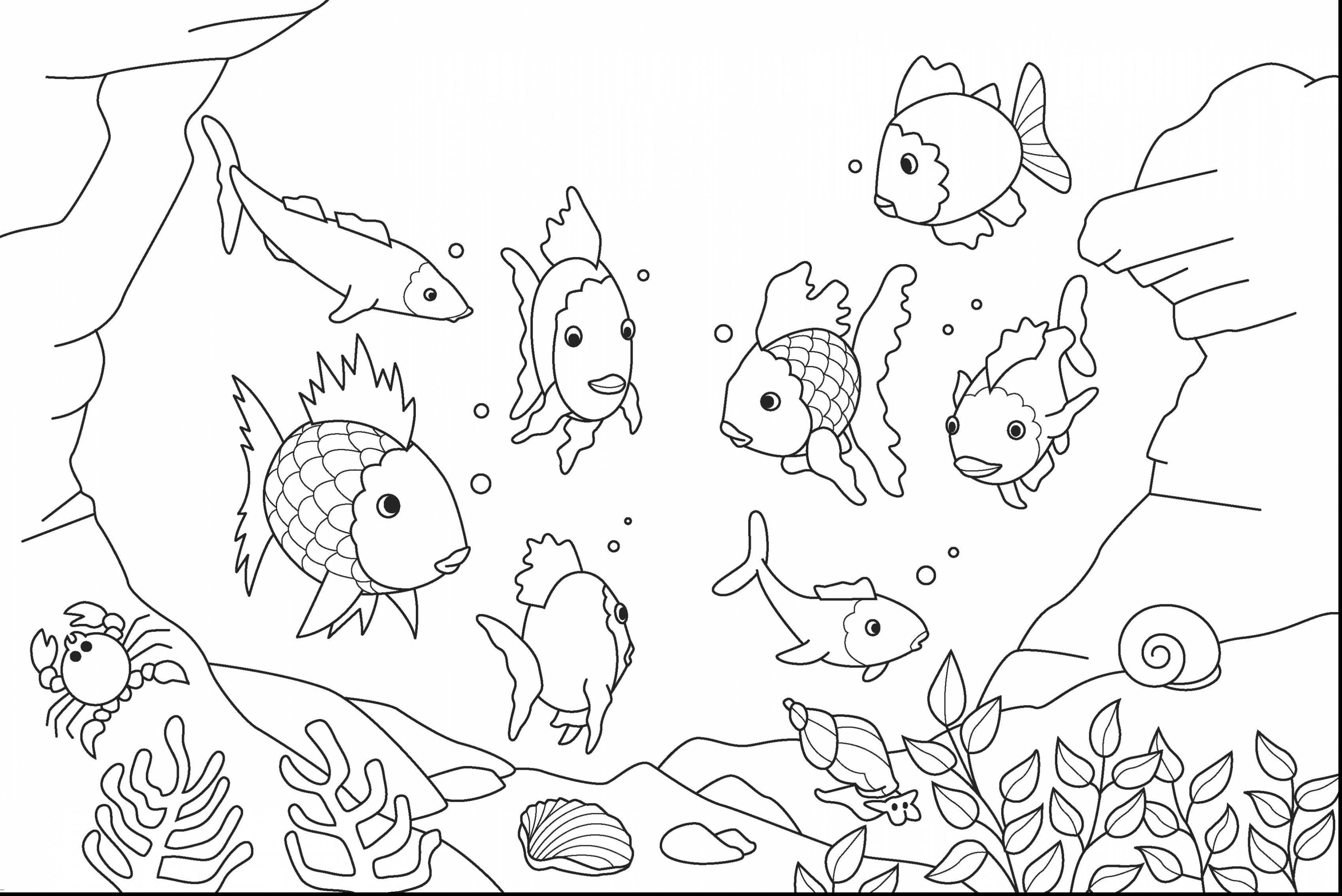 Sea Coloring Pages Under Sea Coloring Pages High Quality Images  2134